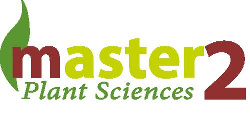 Logo Master 2