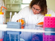 Institut des Sciences du Végétal - CNRS - Gif-sur-Yvette
